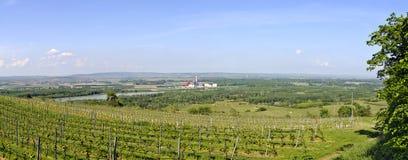 Vale de Danúbio ao leste de Krems Imagem de Stock Royalty Free