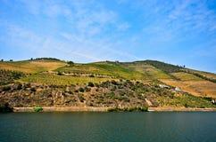 Vale de Douro: Beira-rio de Douro com os vinhedos perto de Pinhao, Portugal Foto de Stock