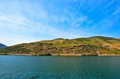 Vale de Douro: Beira-rio de Douro com os vinhedos perto de Pinhao, Portugal fotografia de stock