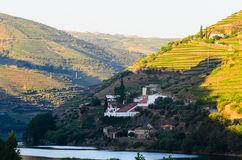Vale de Douro do rio, Portugal imagens de stock royalty free