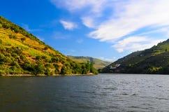 Vale de Douro do rio, Portugal Fotografia de Stock