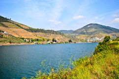 Vale de Douro: O beira-rio e os vinhedos aproximam o peso a Dinamarca Regua, Portugal imagem de stock