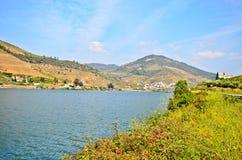 Vale de Douro: O beira-rio e os vinhedos aproximam o peso a Dinamarca Regua, Portugal fotos de stock