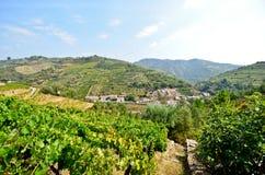 Vale de Douro: Vinhedos e vila pequena perto do peso a Dinamarca Regua, Portugal Imagens de Stock Royalty Free