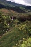 Vale de Hanapepe em Havaí Imagens de Stock Royalty Free