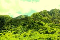 Vale de Iao, Maui Fotos de Stock Royalty Free