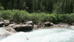 Vale de Krimml Achental em cachoeiras de Krimml na terra de Salzburger Áustria video estoque