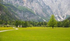 Vale de Logarska dolina/Logar, Eslovênia fotos de stock royalty free