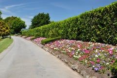 Vale de Mona - camas de flor, Christchurch, Nova Zelândia Foto de Stock