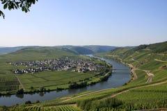 Vale de Moselle Fotografia de Stock