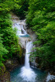 Vale de Nishizawa em Yamanashi, Japão Fotografia de Stock