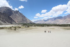 Vale de Nubra (Ladakh) Imagens de Stock Royalty Free