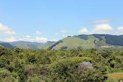 Vale de Reikorangi, Kapiti, Nova Zelândia Foto de Stock Royalty Free