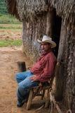 Vale de Vinales, Cuba - 24 de setembro de 2015: Coutrysi cubano local Fotos de Stock Royalty Free