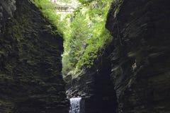 Vale de Watkins, parque estadual de NY Fotos de Stock