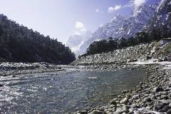 Vale de Yumthang Imagens de Stock Royalty Free