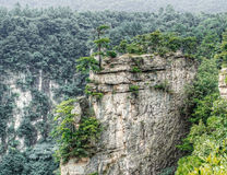 Vale de Zhangjiajie Fotografia de Stock