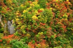 Vale do desfiladeiro de Naruko com as folhas de outono coloridas imagens de stock