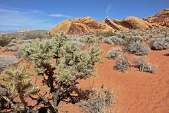 Vale do parque estadual do fogo, Nevada, EUA fotografia de stock