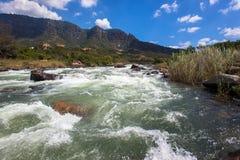 Vale dos Rapids da água fresca do rio Fotos de Stock