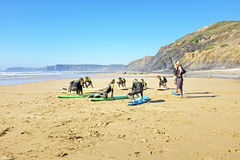 VALE FIGUEIRAS, PORTUGAL - Surfers getting surf classes Royalty Free Stock Image