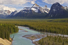 Vale glacial, Jasper National Park, Canadá imagens de stock