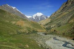 Vale gramíneo verde da montanha com córrego e montes Fotos de Stock