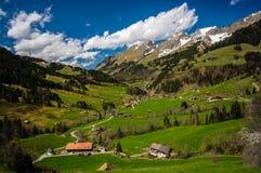 Vale idílico maravilhoso em Suíça imagem de stock