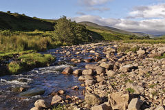 Vale Northumberland Inglaterra de Harthope Fotografia de Stock Royalty Free