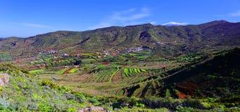 Vale palmar Tenerife do EL da vista panorâmica fotografia de stock