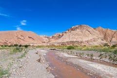 Vale Quitor dos oásis em Atacama, o Chile foto de stock
