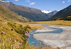 Vale selvagem de NZ Fotografia de Stock