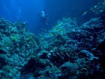 vale subaquático Imagens de Stock