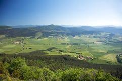 Vale verde ao lado de pamplona Imagem de Stock