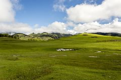 Vale verde com aldeia da montanha Omalo em montanhas de Cáucaso Ge?rgia, Tusheti fotografia de stock royalty free