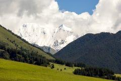 Vale verde em montanhas de Cáucaso na manhã Ge?rgia, Tusheti foto de stock