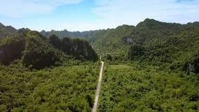 Vale verde largo do panorama aéreo pictórico cruzado pela estrada video estoque