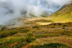 Vale verde nas montanhas Imagem de Stock
