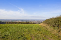 Vale of york from a green meadow Stock Photo