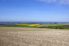 Vale of york in springtime Royalty Free Stock Images