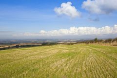 Vale of york. A view of the vale of york from a hillside field under a blue cloudy sky in autumn Royalty Free Stock Images