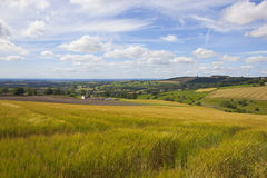 Vale of york vista. A stunning view of the vale of york from a ripening hillside barley field under a blue summer sky in the yorkshire wolds Stock Images