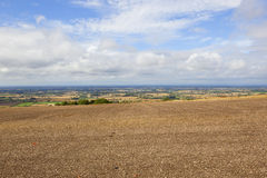 Vale of york vista. Views of the vale of york from a cultivated hillside field in the yorkshire wolds under a summer blue cloudy sky Royalty Free Stock Image
