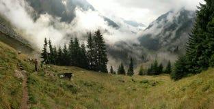Valea in Fagaras-Bergen wordt gelezen die royalty-vrije stock foto