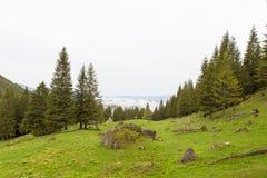 Valea Gaura Fotografía de archivo libre de regalías