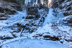 Valea lui斯坦峡谷在冬天,罗马尼亚 库存照片