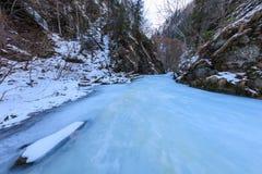Valea lui斯坦峡谷在冬天,罗马尼亚 库存图片