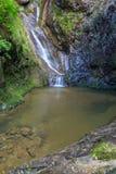 Valea lui斯坦峡谷在罗马尼亚 免版税图库摄影