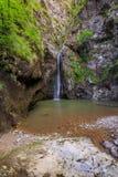 Valea lui斯坦峡谷在罗马尼亚 库存照片