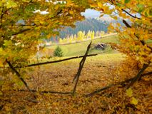 Valea Rece i det Brasov länet i Rumänien royaltyfria bilder